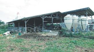 kadena Livestock industry
